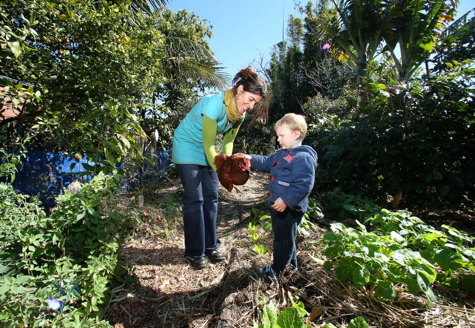 Bulli Community Garden